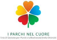 ParchiCuore