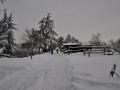 dulcamara-ozzano-cooperativa-bologna-neve-panorama