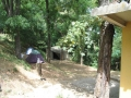 ozzano-bologna-dulcamara-campeggio