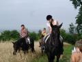 ozzano-bologna-dulcamara-cavalli